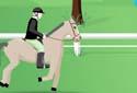 Cavalos de competição