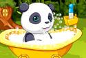 Cuidados a ter com o panda