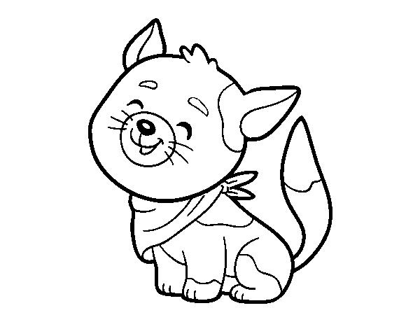 Desenho De Gato Com Bandana Para Colorir