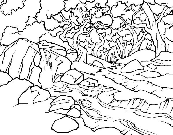 Desenho De Paisagem Da Floresta Com Um Rio Para Colorir Colorir Com