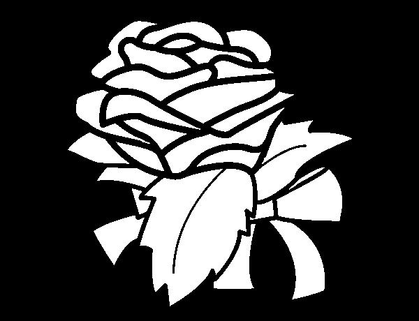 Desenho De Rosa Flor Para Colorir Colorir Com